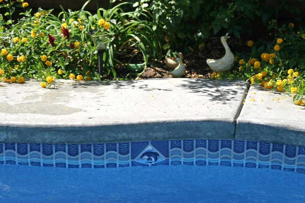 Java Fiberglass Pool